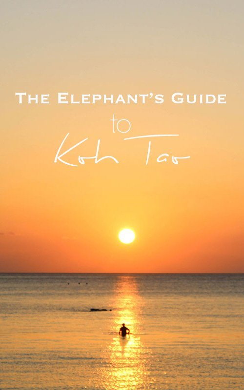 Person in the ocean during sunset with orange sky and yellow sun with text overlay - The Elephant's Guide to Koh Tao