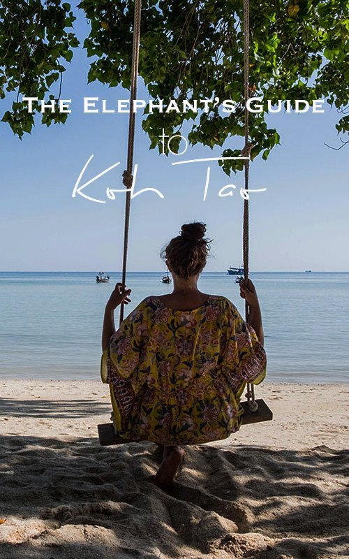 Girl from behind on a swing on the beach, wearing a yellow dress ovelooking the ocean. with text overlay - The Elephant's Guide to Koh Tao
