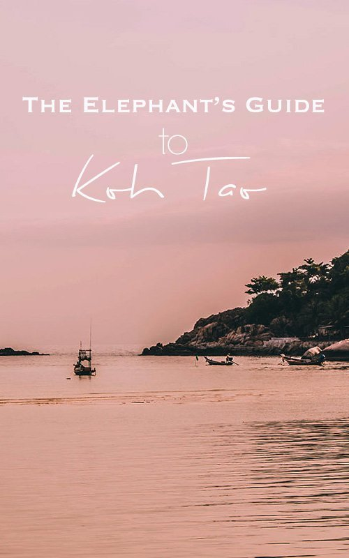 Pink skies over the ocean in Koh Tao, a few boats and boulders in the background with text overlay - The Elephant's Guide to Koh Tao