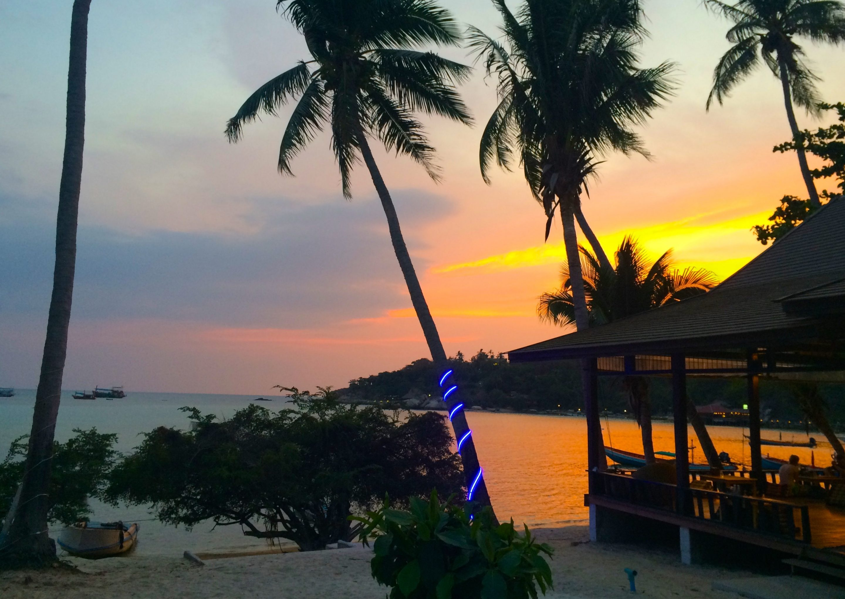 The Elephant's travel guide Koh Tao. Completely biased and very awesome, explore the best places to eat, sleep and relax on Turtle Island.