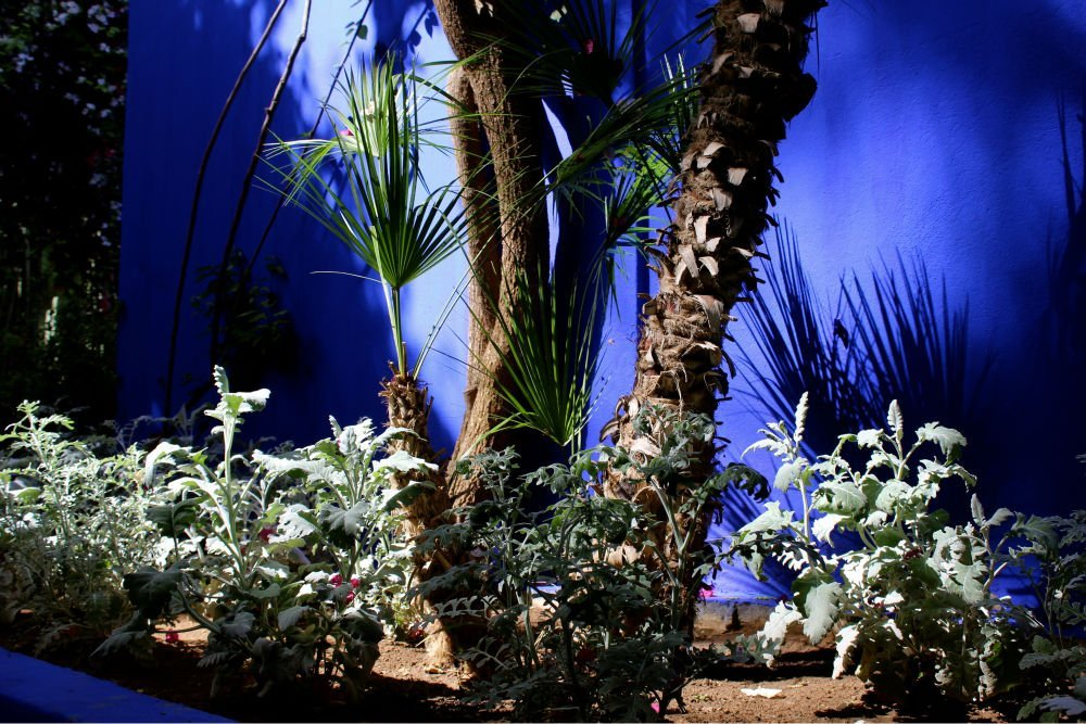 jardin-majorelle-marrakech-yves-saint-laurent-morocco-midnight-blue-elephant
