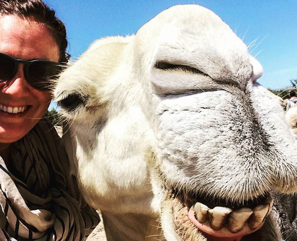 Keen for a 2016 wrap up of a different kind? I am sharing some of my favorite moments from this year - in animal selfies.