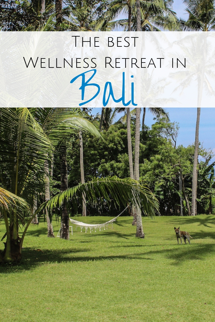 The cure for anything is saltwater: sweat, tears or the sea. Head to the Island of Gods for a wellness retreat in Bali & a good dose of all three. #bali #wellness Best wellness retreats in Bali | Yoga retreats in Bali | Where to do a wellness retreat | Wellness in Bali
