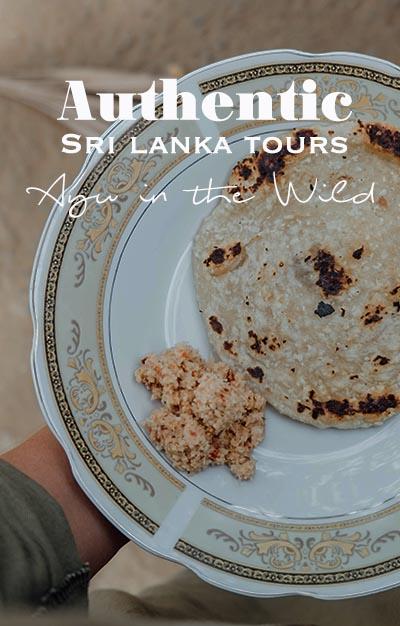 Sri Lanka Tours | Ayu in the Wild | Responsible Travel | Elephant Safari