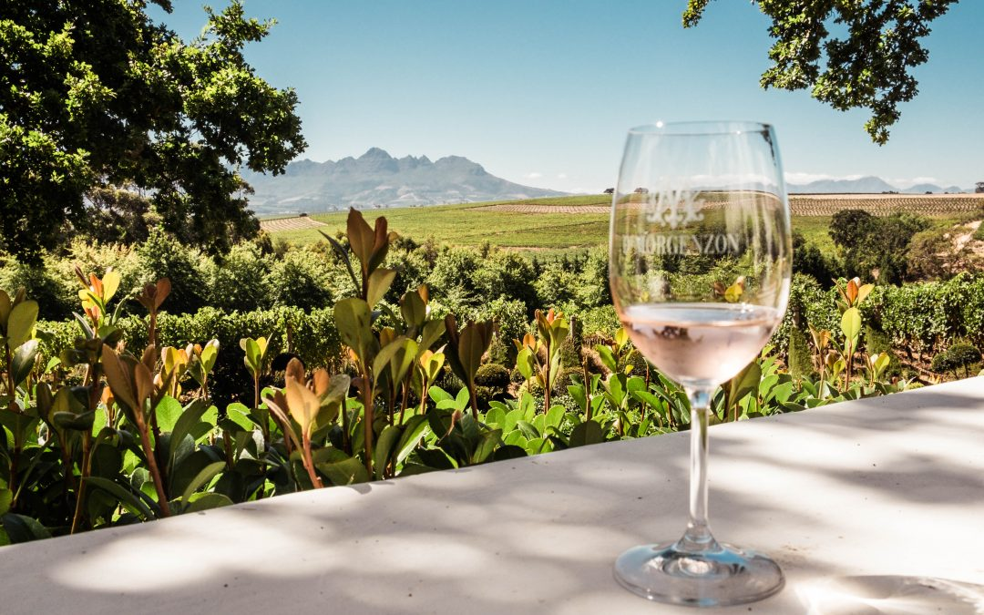 Of kissing frogs & musical grapes – A Cape Town wine tour.