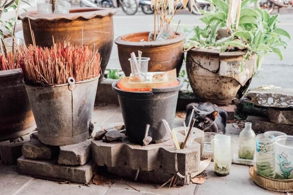 Black cat sitting next to pots in Bangkok.