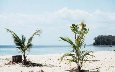 Surprise paradise – The best beach in Phuket.