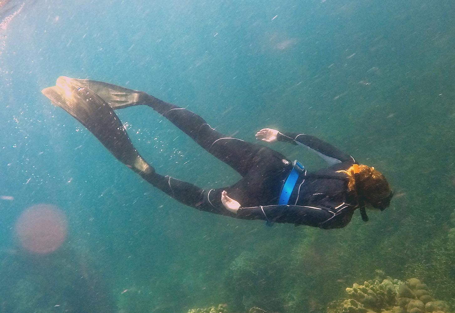 Apnea comes from the word breathless and it is the art of diving on a single breath. The ins & outs of a freediving course in Koh Tao, Thailand.