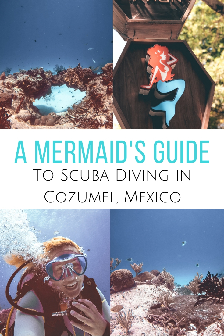 Want to explore one of the best dive areas in the world? A guide to scuba diving in Cozumel, Mexico, the best dive center to choose & favorite dive sites.   #mexico #tulum #scuba #cozumel #scubadiving Scuba Diving in Mexico | Best diving in Cozumel | Where to go scuba diving in Mexico | Scuba Diving in Cozumel | Cozumel diving | Dive center in Playa del Carmen