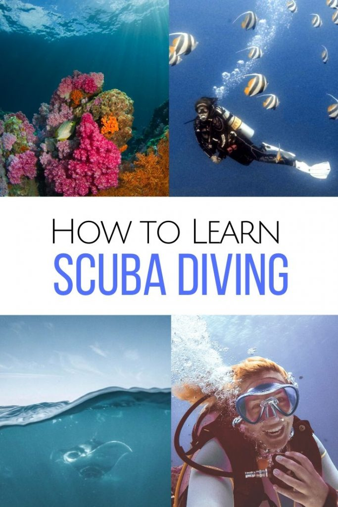 Want to be a mermaid? Read all about getting your scuba certification, how to learn diving & what is covered in an Open Water course. #scubadiving #scuba How to learn scuba diving | Becoming an Open Water diver | Learn scuba diving | Getting a scuba certification