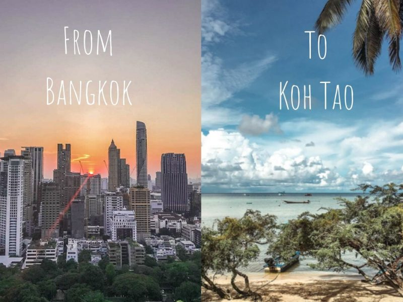 Bangkok & Koh Tao landscape